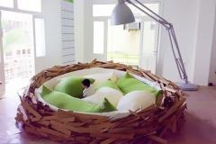 7 Vogelnest Bed