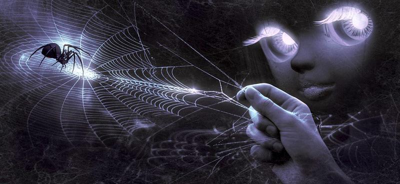 de kans dat er tijdens uw slaap in een spin in uw mond kruipt is nihil